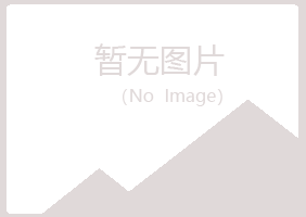 供應:`NUINTEK VRK`電容器MF CAPACITO
